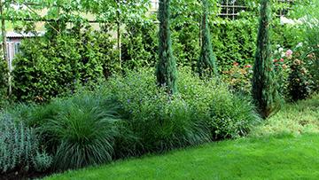 Foto van een van onze tuinen
